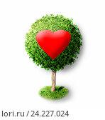 Красное сердце на зеленое дерево. Стоковая иллюстрация, иллюстратор Юлия Дьякова / Фотобанк Лори