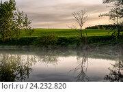 Река утром летом. Стоковое фото, фотограф Дмитрий Голуб / Фотобанк Лори
