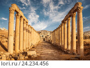 Купить «Columns of the cardo maximus, Ancient Roman city of Gerasa of Antiquity , modern Jerash, Jordan», фото № 24234456, снято 20 сентября 2013 г. (c) Наталья Волкова / Фотобанк Лори