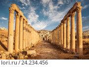 Columns of the cardo maximus, Ancient Roman city of Gerasa of Antiquity , modern Jerash, Jordan (2013 год). Стоковое фото, фотограф Наталья Волкова / Фотобанк Лори
