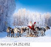 Купить «Santa Claus and his reindeer in forest», фото № 24252652, снято 5 декабря 2010 г. (c) Владимир Мельников / Фотобанк Лори