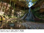 Барьяльский водопад во влажном самшитовом лесу в Абхазии. Стоковое фото, фотограф Матвей Солодовников / Фотобанк Лори