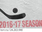 Купить «Хоккейный сезон 2016-2017 года», фото № 24263940, снято 6 февраля 2010 г. (c) Дмитрий Грушин / Фотобанк Лори