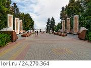 Купить «Аллея героев в Волгограде», фото № 24270364, снято 31 августа 2016 г. (c) Elena Odareeva / Фотобанк Лори