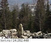 """Купить «Необычный камень """"Отшельник"""" на каменной реке в экопарке Зюраткуль», фото № 24282448, снято 12 апреля 2008 г. (c) Нина Карымова / Фотобанк Лори"""