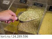 Купить «green buckwheat shop», фото № 24289596, снято 18 января 2020 г. (c) Яков Филимонов / Фотобанк Лори