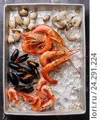 Купить «Свежие сырые морепродукты: вонголе, мидии, креветки», фото № 24291224, снято 5 августа 2016 г. (c) Лисовская Наталья / Фотобанк Лори