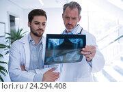 Купить «Doctors having discussion on x-ray report in corridor», фото № 24294408, снято 11 сентября 2016 г. (c) Wavebreak Media / Фотобанк Лори