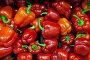 Красный сладкий перец на прилавке, фото № 24302700, снято 1 декабря 2016 г. (c) Александр Тарасенков / Фотобанк Лори