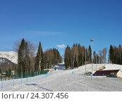 Купить «Лыжная трасса среди деревьев, горнолыжный курорт Красная Поляна», фото № 24307456, снято 1 апреля 2016 г. (c) DiS / Фотобанк Лори