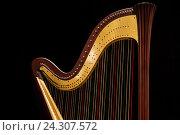 Купить «Музыкальный инструмент арфа стоит на сцене концертного зала», фото № 24307572, снято 2 декабря 2016 г. (c) Николай Винокуров / Фотобанк Лори