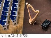 Купить «Вид сверху на музыкальный инструмент арфу, который стоит на сцене концертного зала перед началом концерта», фото № 24316736, снято 4 декабря 2016 г. (c) Николай Винокуров / Фотобанк Лори