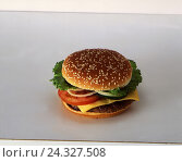 Купить «Cheeseburger, bread roll, books, hamburger, sesame, cheese, Almost Food, fast food, nutrition, food, unhealthily», фото № 24327508, снято 21 августа 2018 г. (c) mauritius images / Фотобанк Лори