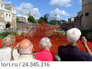 Купить «London, England, UK. 'Blood Swept Lands and Seas of Red' - Poppies in the Moat at the Tower of London. Art installation 2014», фото № 24345316, снято 22 августа 2018 г. (c) mauritius images / Фотобанк Лори