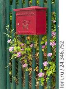 Купить «Paling, green, mailbox, red, clematis, detail,», фото № 24346752, снято 11 июня 2014 г. (c) mauritius images / Фотобанк Лори