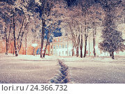 Купить «Winter landscape - city winter park with frosted trees under falling snow in the night», фото № 24366732, снято 21 марта 2019 г. (c) Зезелина Марина / Фотобанк Лори