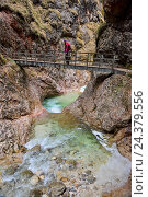Купить «Course of a stream in the Almbachklamm (gorge)», фото № 24379556, снято 16 августа 2018 г. (c) mauritius images / Фотобанк Лори