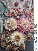 Купить «Dried flowers,», фото № 24398980, снято 20 сентября 2018 г. (c) mauritius images / Фотобанк Лори