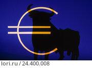 Купить «Composing, stock exchange, sculpture, bull, euro-character euro, economy, global trade, world market, money market, finances, stocks, trade, financial...», фото № 24400008, снято 28 июля 1998 г. (c) mauritius images / Фотобанк Лори