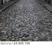 Купить «Street, cobblestones, traffic route, stone pavement, paved, unevenly, haltingly, stones, old», фото № 24400196, снято 18 марта 2003 г. (c) mauritius images / Фотобанк Лори