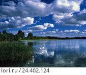 Купить «Poland, Masuria, Nikolaiken lake, swans, Europe, ground moraine scenery, lake, scenery, nature, water birds, two, beautyful clouds», фото № 24402124, снято 2 мая 2003 г. (c) mauritius images / Фотобанк Лори