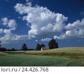Купить «Poland, Masuria, Nikolaiken, field scenery, court, summer, Mazury, formerly East Prussia, terminal moraine scenery, ground moraine scenery, nature, scenery...», фото № 24426768, снято 18 марта 2003 г. (c) mauritius images / Фотобанк Лори