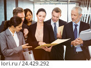 Купить «Lawyer looking at documents and interacting with business people», фото № 24429292, снято 17 июля 2019 г. (c) Wavebreak Media / Фотобанк Лори