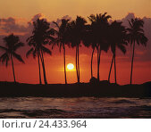 Купить «Sundown, island, palms, sea, water, beach, shore, cloudy sky, vacation, rest, outside», фото № 24433964, снято 12 мая 2010 г. (c) mauritius images / Фотобанк Лори