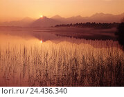Купить «Germany, Allgäu, spell wood lake, sundown, back light, Europe, Bavaria, Upper Bavaria, close feet, lake, mood, rest, silence, Idyll, mountains, mountain...», фото № 24436340, снято 29 сентября 2005 г. (c) mauritius images / Фотобанк Лори