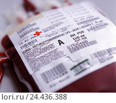 Unit stored blood, erythrocyte concentrate, detail, blood, blood bank, blood donation, bag, adhesive label, entries, blood group, concentrate, erythrocyte..., фото № 24436388, снято 27 сентября 2005 г. (c) mauritius images / Фотобанк Лори