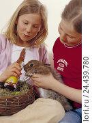 Купить «Easter, children, girls, Easter nest, pygmy rabbit, happy, Easter feast, Easter time, Easter traditions, Easter bunny, chocolate, chocolate hare, sweets...», фото № 24439780, снято 12 марта 2003 г. (c) mauritius images / Фотобанк Лори