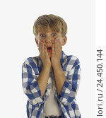 Купить «Boy, blond, shirt, checked, gesture, hands, look, surprise, fright, half portrait, Children, child, astonished, surprises, startled, horrifies, terror...», фото № 24450144, снято 29 сентября 2000 г. (c) mauritius images / Фотобанк Лори