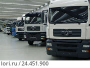 "Купить «Factory building, truck, ""ONE"" park, side by side, detail, Europe, Bavaria, Upper Bavaria, Dachau, one truck production, delivery hall, Lkw's, vehicles...», фото № 24451900, снято 13 июля 2004 г. (c) mauritius images / Фотобанк Лори"