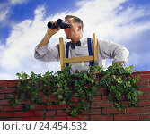 Купить «More poorly, man, conductor, view, binoculars Men, brick wall, wall, clay brick, ivy, curiosity, curiosity, tension adjuster, see, look, look, search,...», фото № 24454532, снято 25 сентября 2000 г. (c) mauritius images / Фотобанк Лори