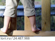 Купить «wooden fence, child, feet, barefoot, detail, fence, paling, wooden bars, childhood, leisure time, climb, stand, back view, from the back, trousers, summery, summer, outside, child bones», фото № 24487988, снято 4 января 2006 г. (c) mauritius images / Фотобанк Лори