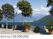 Купить «Italy, Lago Maggiore, lake, Cannobio, promenade, alps, mountains,», фото № 24500656, снято 7 января 2010 г. (c) mauritius images / Фотобанк Лори