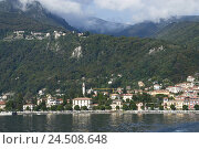 Купить «Italy, Cannero Riviera, Lago Maggiore, lake, local view,», фото № 24508648, снято 7 января 2010 г. (c) mauritius images / Фотобанк Лори