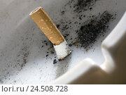 Купить «Ashtray, filtertip cigarette, expressed, detail,», фото № 24508728, снято 7 апреля 2009 г. (c) mauritius images / Фотобанк Лори