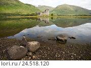 Купить «Great Britain, Scotland, Argyll and Bute, Loch Awe, Kilchurn Castle,», фото № 24518120, снято 21 августа 2018 г. (c) mauritius images / Фотобанк Лори