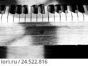 Купить «Piano keys, s/w,», фото № 24522816, снято 20 марта 2019 г. (c) mauritius images / Фотобанк Лори