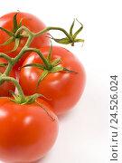 Купить «Shrub tomatoes, branch, detail, tomato branch, Food, vegetables, tomatoes, red, ripe, rich in vitamins, freshly, vitamins, nutrition, healthy, studio,», фото № 24526024, снято 19 февраля 2009 г. (c) mauritius images / Фотобанк Лори