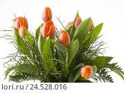 Купить «Tulip bunch,», фото № 24528016, снято 15 марта 2009 г. (c) mauritius images / Фотобанк Лори