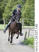Купить «Tournament, riding school, rider, Iceland pony, gait Tölt,», фото № 24537140, снято 15 июня 2007 г. (c) mauritius images / Фотобанк Лори