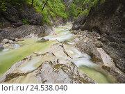 Купить «Germany, Bavaria, Berchtesgadener country, alp brook gorge,», фото № 24538040, снято 15 июля 2009 г. (c) mauritius images / Фотобанк Лори
