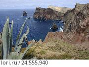 Купить «Portugal, island Madeira, Punta de Sao Lorenco, coastal scenery,», фото № 24555940, снято 15 июня 2009 г. (c) mauritius images / Фотобанк Лори