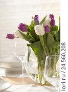 Купить «Bouquet, tulips, vase,», фото № 24560208, снято 14 апреля 2011 г. (c) mauritius images / Фотобанк Лори