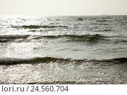 Купить «Sea, horizon, outside, waves, width, waters, the Baltic Sea, back light, nature, waves, the FRG, Germany, Europe, Schleswig - Holstein, Grömitz,», фото № 24560704, снято 4 мая 2011 г. (c) mauritius images / Фотобанк Лори