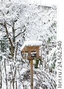 Купить «Birdhouse, winter,», фото № 24562540, снято 19 августа 2018 г. (c) mauritius images / Фотобанк Лори