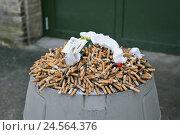 "Купить «Ashtray, overcrowds, outside ashtrays, steel, cigarettes, garbage, smoke, smoker's lung, nicotine, tar, ""cancer"", unhealthily, health, death, masses, many...», фото № 24564376, снято 27 января 2011 г. (c) mauritius images / Фотобанк Лори"