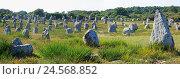 Купить «France, Brittany, Carnac, stele field, menhirs,», фото № 24568852, снято 16 декабря 2018 г. (c) mauritius images / Фотобанк Лори